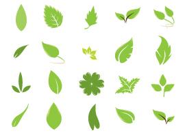 Green Leaves - Free Vectors