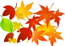 Vector Foliage  Free Vectors